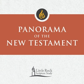 Panorama of the New Testament - DVD