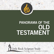 Panorama of the Old Testament - DVD