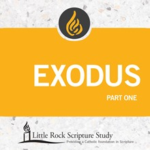 Exodus, Part One - DVD