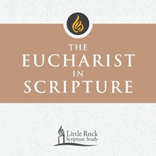 The Eucharist in Scripture - DVD