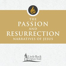 The Passion and Resurrection Narratives of Jesus - DVD