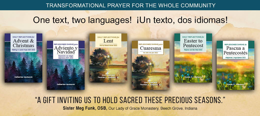 Liturgical Press, Daily Reflections for Advent and Christmas, Lent and Easter.  Availabable in English and Spanish